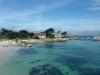 monterey-bay-aquarium6